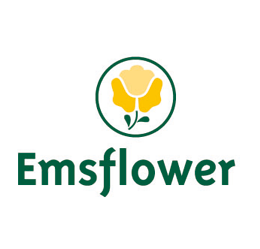 Emsflower GmbH
